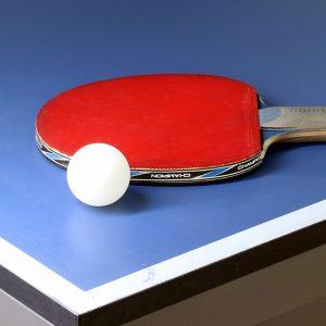 Association Moyausaine de Tennis de Table