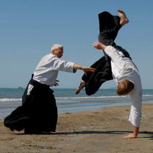 Association « Moyaux Association Aïkido »