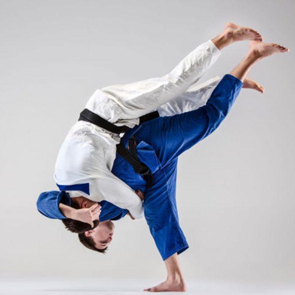 Entente Val d'Auge Judo